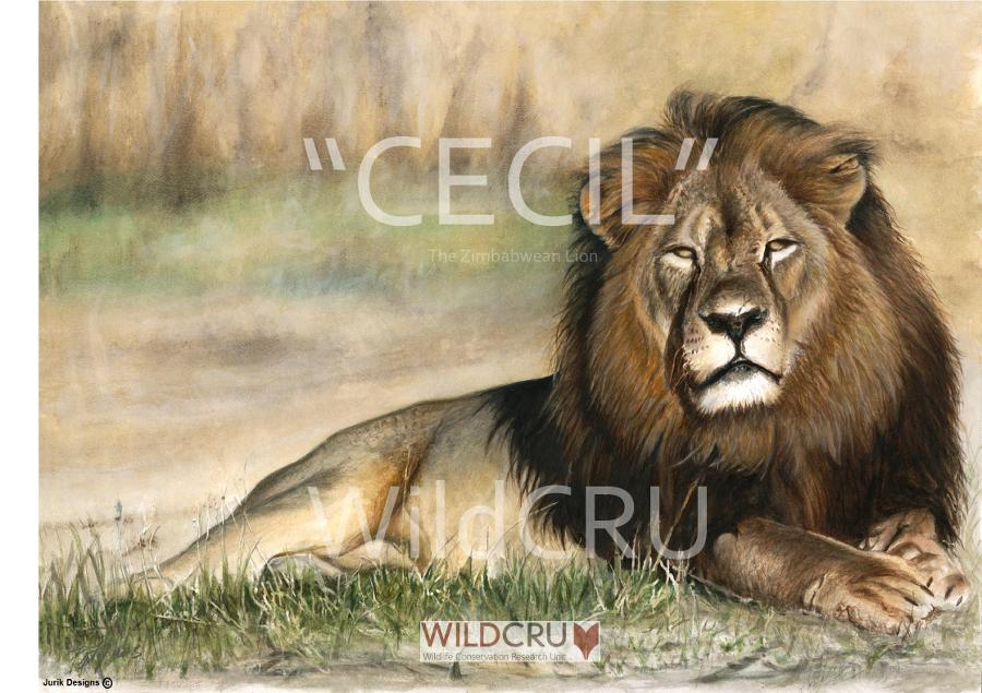 Cecil by Jurik Designs