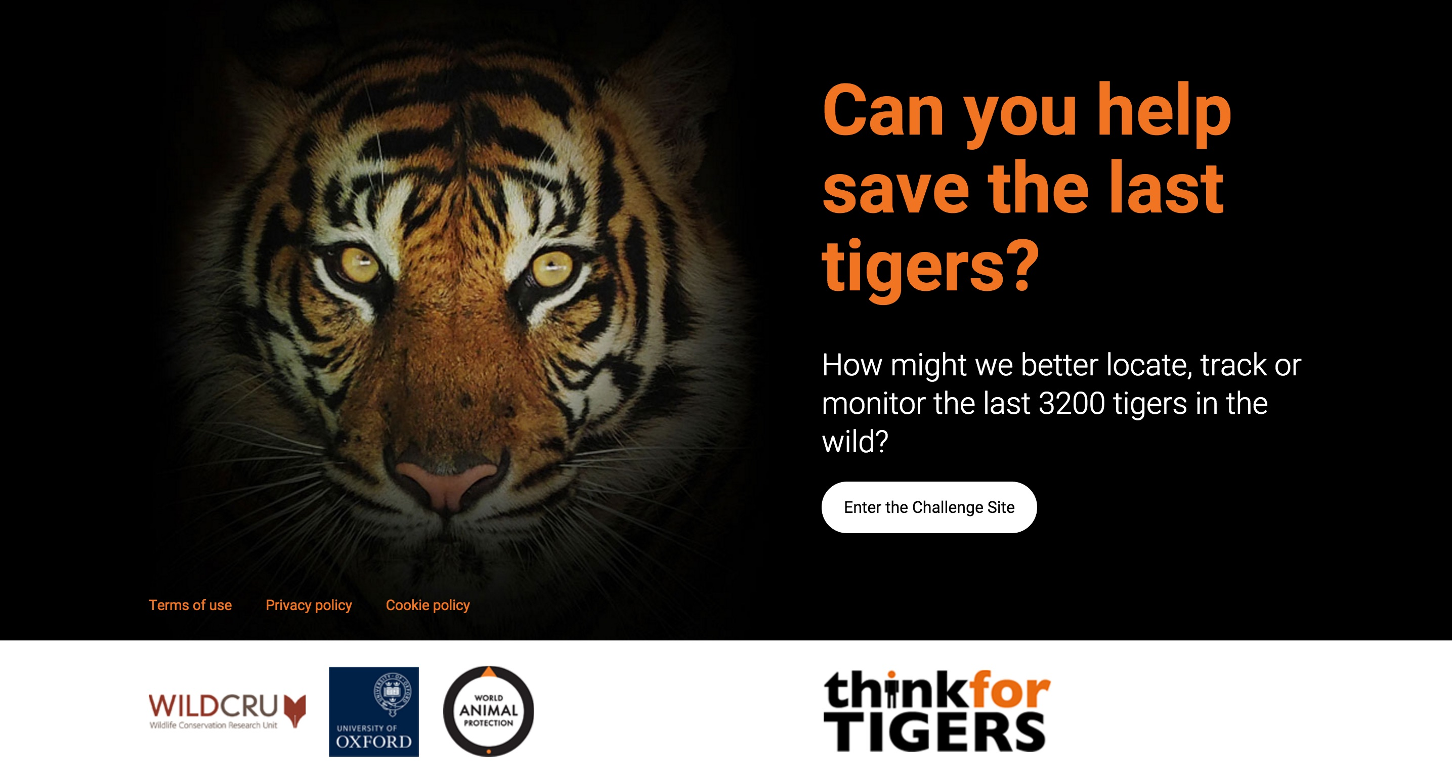 Think for Tigers