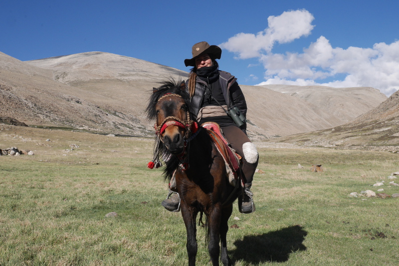 In search of the Himalayan wolf in the vast landscapes of the Transhimalayas, where travelling by horse presents a welcome change to the usual travel by foot